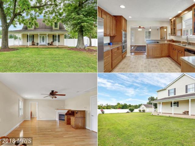 24620 Hollywood Road, Hollywood, MD 20636 (#SM10171407) :: Bob Lucido Team of Keller Williams Integrity