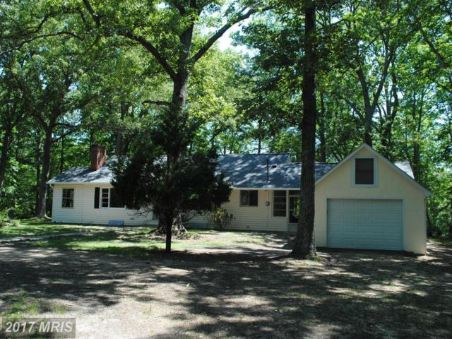 20370 Flat Iron Road, Great Mills, MD 20634 (#SM9925059) :: Pearson Smith Realty