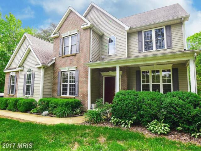 46431 Hilton Ridge Drive, Lexington Park, MD 20653 (#SM9932609) :: Pearson Smith Realty