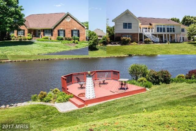 8412 Hildy Court, Spotsylvania, VA 22553 (#SP10001342) :: Pearson Smith Realty