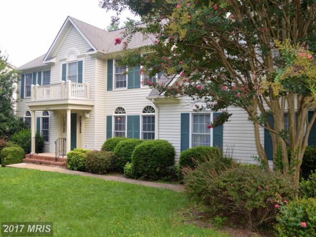 10412 Colechester Street, Fredericksburg, VA 22408 (#SP10017238) :: Green Tree Realty
