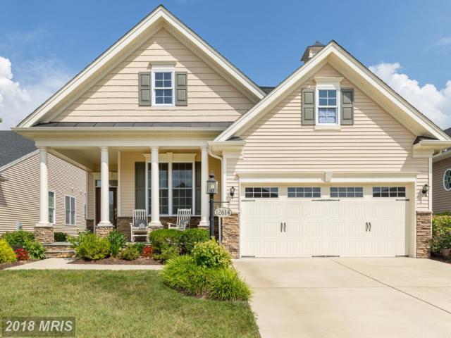 12614 Cannon Crest Drive, Fredericksburg, VA 22407 (#SP10024157) :: Pearson Smith Realty