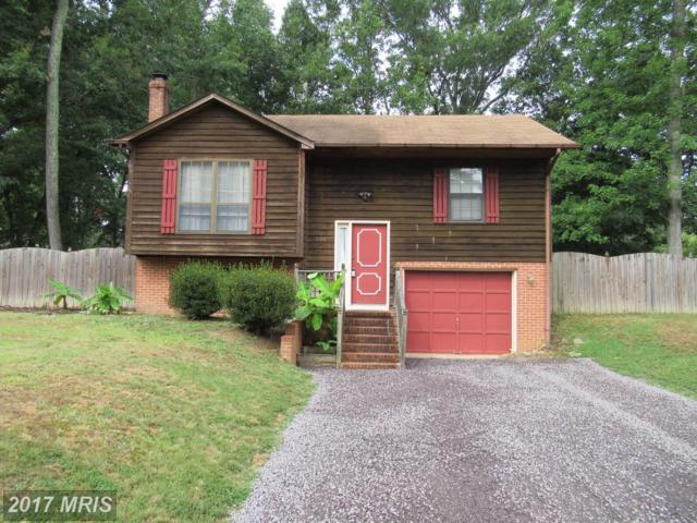 308 Galaxie Drive, Fredericksburg, VA 22407 (#SP10025977) :: Pearson Smith Realty