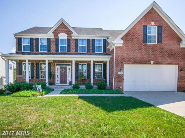9929 Box Oak Court, Fredericksburg, VA 22407 (#SP10027148) :: LoCoMusings