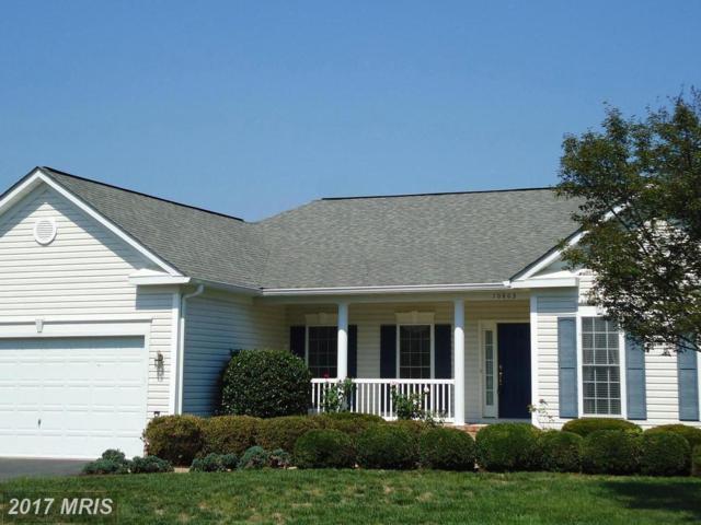 10803 Samantha Place, Fredericksburg, VA 22408 (#SP10039900) :: Pearson Smith Realty