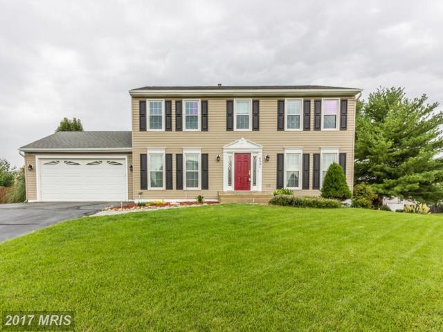 6501 Cardinal Lane, Fredericksburg, VA 22407 (#SP10040101) :: LoCoMusings