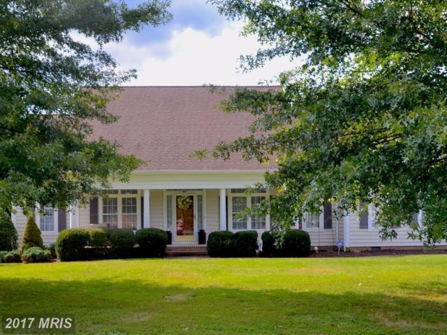 11904 Powder Mill Court, Spotsylvania, VA 22553 (#SP10047849) :: LoCoMusings