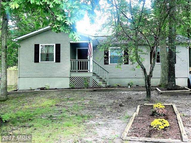 226 Durham Drive, Fredericksburg, VA 22407 (#SP10055335) :: Green Tree Realty