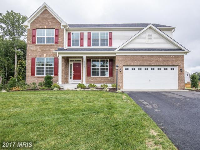 11317 Baron Drive, Fredericksburg, VA 22408 (#SP10058672) :: Pearson Smith Realty