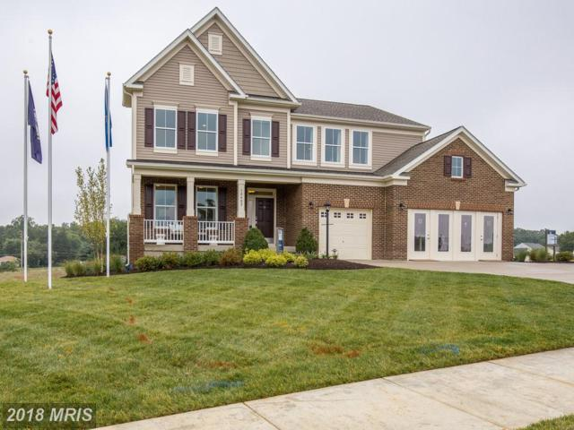10402 Aspen Highlands Drive, Spotsylvania, VA 22553 (#SP10060047) :: The Gus Anthony Team