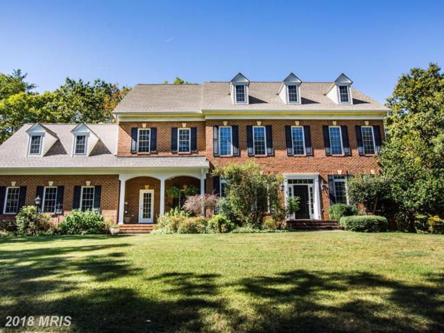 8628 Laroque Run Drive, Fredericksburg, VA 22407 (#SP10073651) :: Green Tree Realty