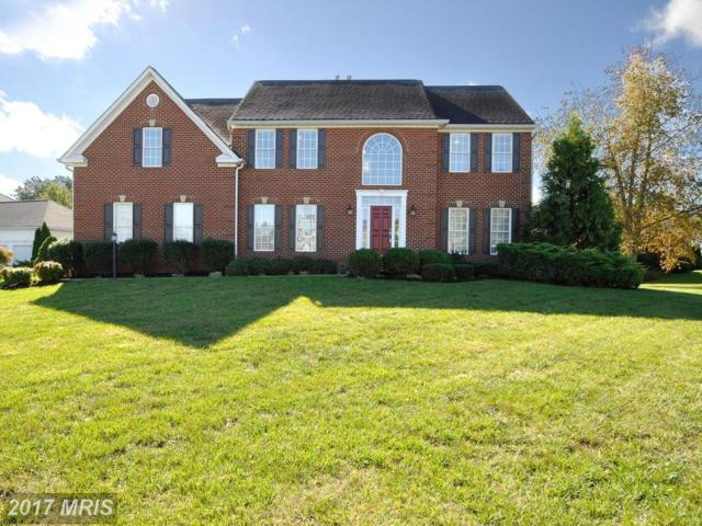 10722 Joshua Lane, Fredericksburg, VA 22408 (#SP10089876) :: Pearson Smith Realty