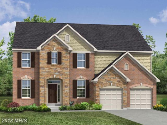 Captain Drive #95, Spotsylvania, VA 22408 (#SP10090374) :: Green Tree Realty