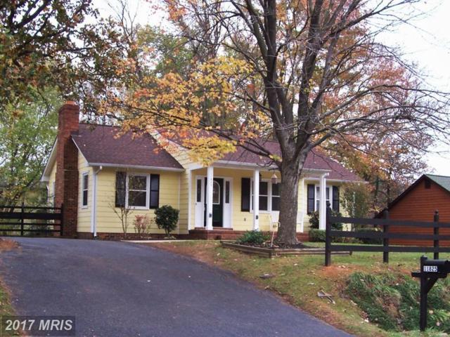 11825 Taft Drive, Fredericksburg, VA 22407 (#SP10102896) :: LoCoMusings