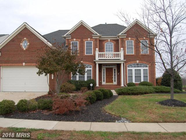5201 Windbreak Drive, Fredericksburg, VA 22407 (#SP10103940) :: Pearson Smith Realty