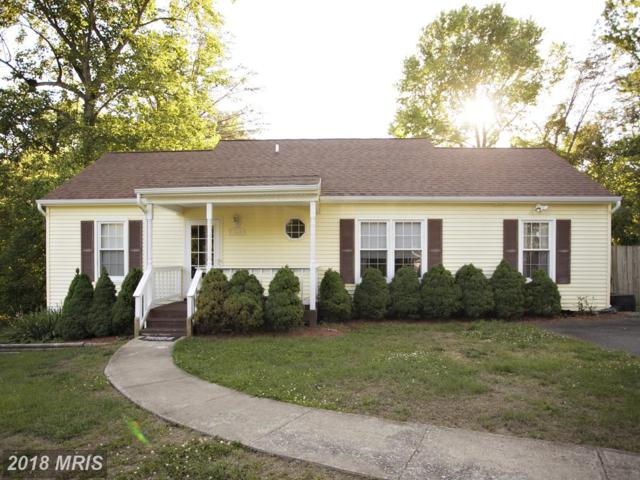 7010 Soulier Lane, Fredericksburg, VA 22407 (#SP10104537) :: Pearson Smith Realty