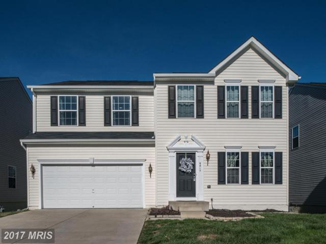 9317 Birch Cliff Drive, Fredericksburg, VA 22407 (#SP10107953) :: Pearson Smith Realty