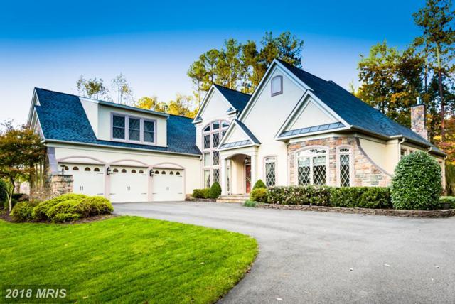 10508 Chatham Ridge Way, Spotsylvania, VA 22551 (#SP10113232) :: Pearson Smith Realty