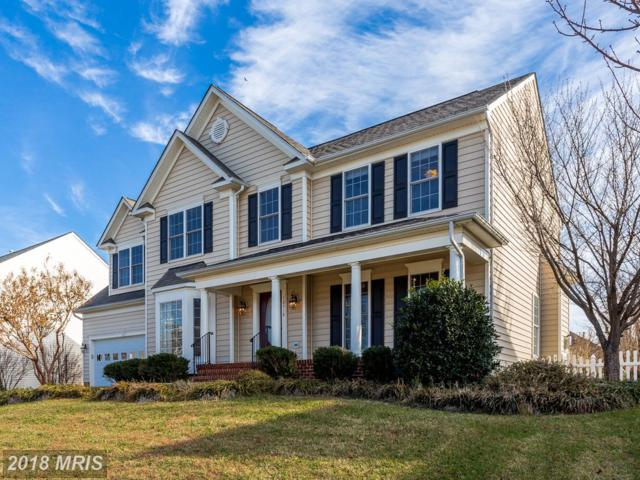 10918 Stacy Run, Fredericksburg, VA 22408 (#SP10123004) :: Pearson Smith Realty