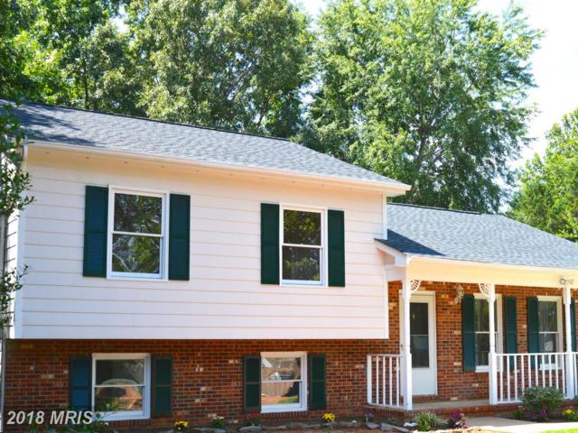 6804 Greenvale Road, Fredericksburg, VA 22407 (#SP10189569) :: Green Tree Realty