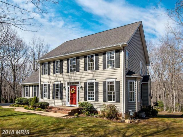 8416 General Sickles Court, Fredericksburg, VA 22407 (#SP10197068) :: Green Tree Realty
