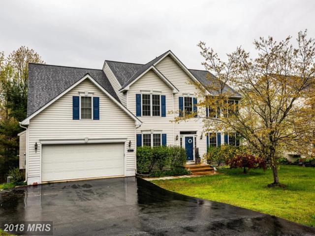 13223 Willow Point Drive, Fredericksburg, VA 22408 (#SP10197142) :: Green Tree Realty