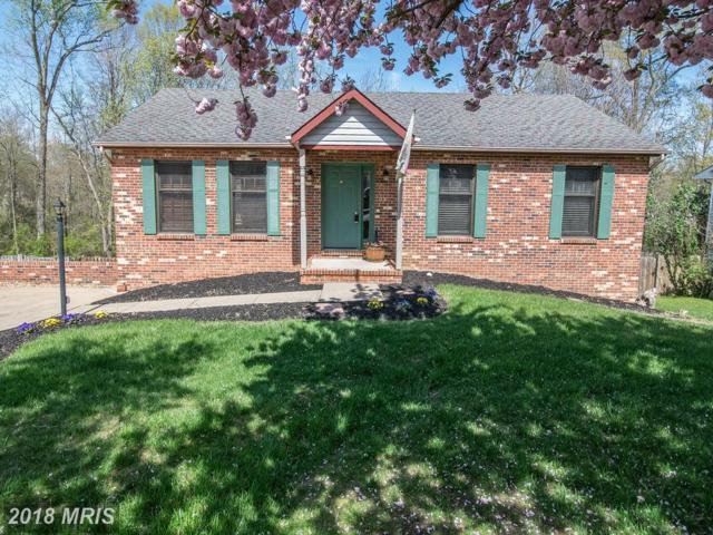 6801 Estate Lane, Fredericksburg, VA 22407 (#SP10204112) :: Green Tree Realty