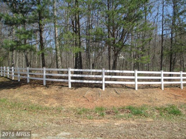 5613 Wyndemere Circle, Mineral, VA 23117 (#SP10208704) :: Keller Williams Pat Hiban Real Estate Group