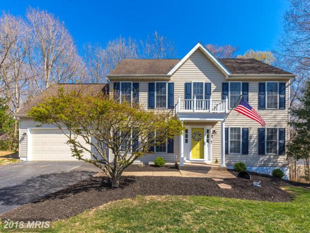10203 Hampton Lane, Fredericksburg, VA 22408 (#SP10209152) :: RE/MAX Executives
