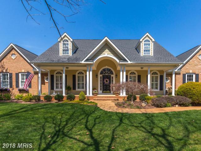 11003 Farmview Way, Spotsylvania, VA 22551 (#SP10215163) :: Browning Homes Group
