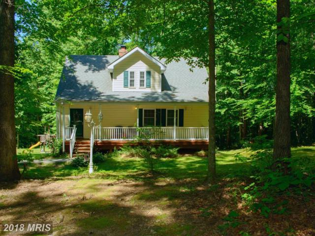 9805 Sherrie Lane, Spotsylvania, VA 22551 (MLS #SP10252381) :: Explore Realty Group