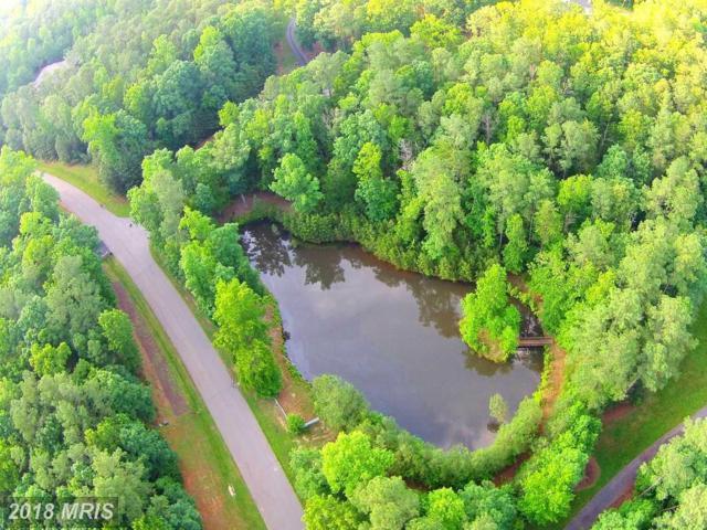 11204 Honor Bridge Farm Place, Spotsylvania, VA 22551 (#SP10259705) :: AJ Team Realty