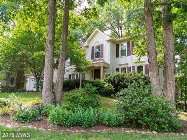 6604 Marsh Court, Fredericksburg, VA 22407 (MLS #SP10260243) :: Explore Realty Group