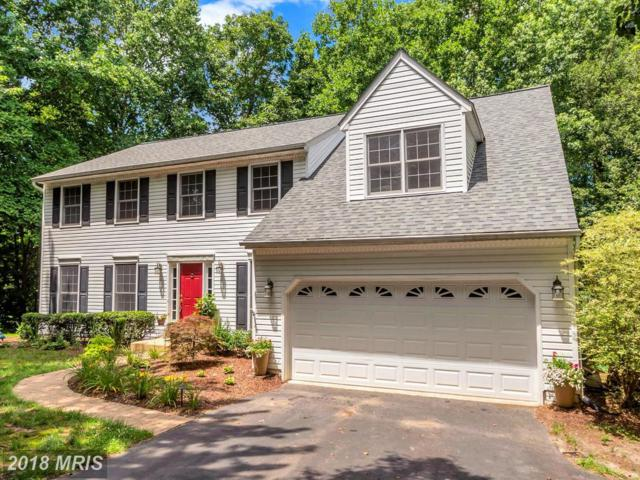 10224 Hampton Lane, Fredericksburg, VA 22408 (#SP10285768) :: RE/MAX Executives