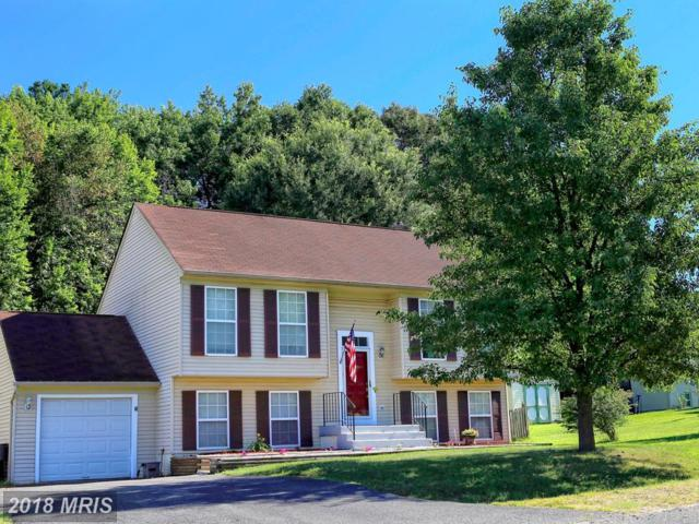 10803 Peach Tree Drive, Fredericksburg, VA 22407 (MLS #SP10292838) :: Explore Realty Group