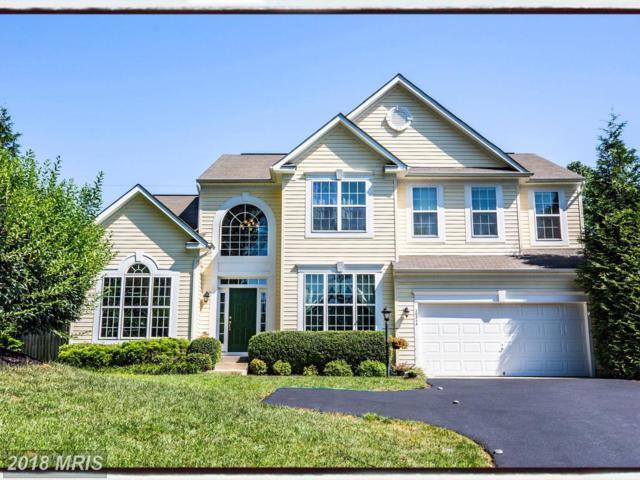 10214 Darden Court, Spotsylvania, VA 22553 (MLS #SP10298676) :: Explore Realty Group