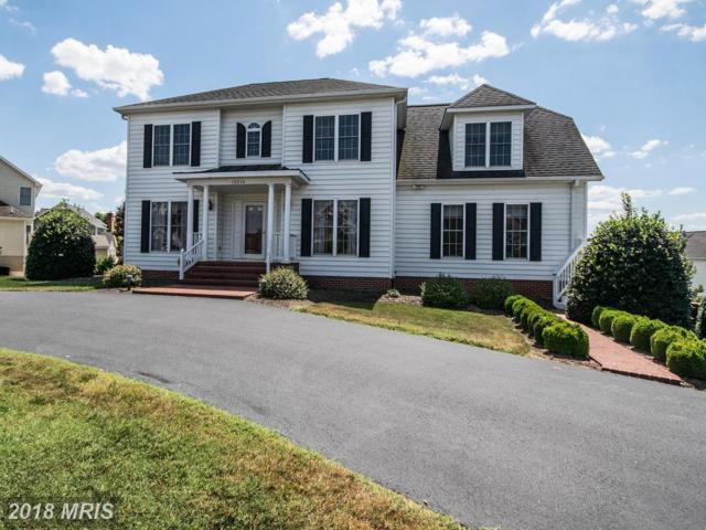 12514 Ventura Lane, Fredericksburg, VA 22407 (#SP10303798) :: Bob Lucido Team of Keller Williams Integrity