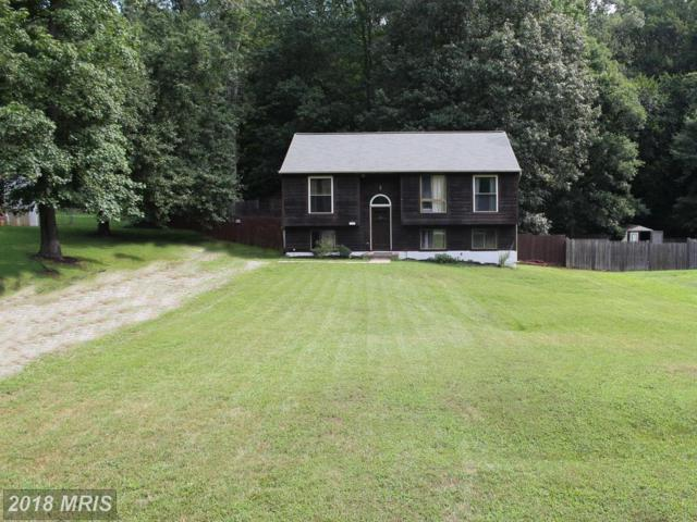 7305 Plantation Forest Drive, Spotsylvania, VA 22553 (#SP10310133) :: Bob Lucido Team of Keller Williams Integrity