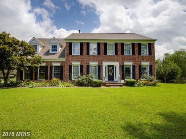 6116 Thayer Street, Fredericksburg, VA 22407 (#SP10315007) :: Green Tree Realty