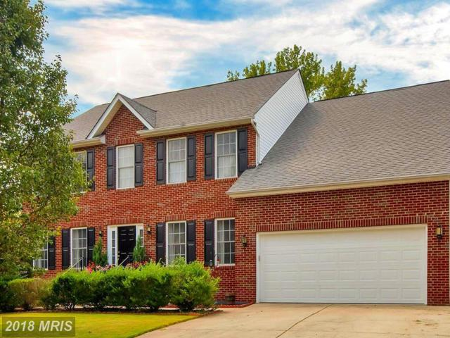 12004 Majestic Court, Fredericksburg, VA 22407 (#SP10332507) :: Colgan Real Estate