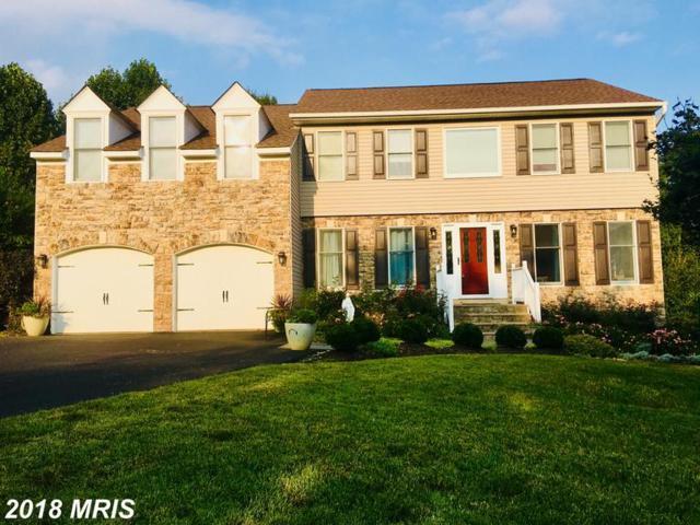 10313 Augusta Court, Fredericksburg, VA 22408 (#SP10350697) :: Browning Homes Group