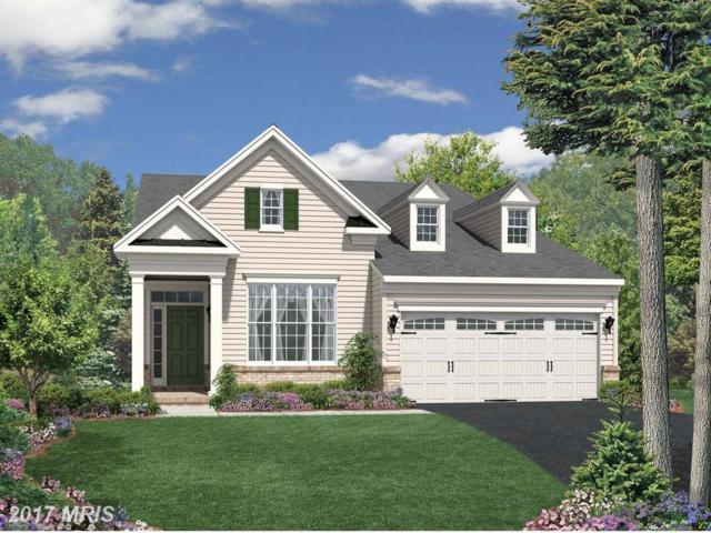 Lees Command Boulevard, Fredericksburg, VA 22407 (#SP8168054) :: Pearson Smith Realty