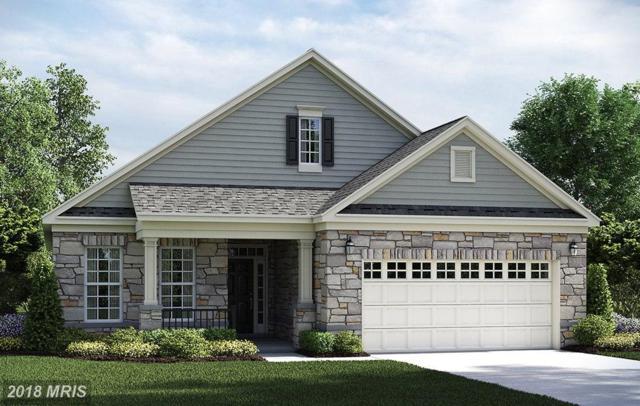 6219 New Berne Road, Fredericksburg, VA 22407 (#SP9013018) :: RE/MAX Gateway