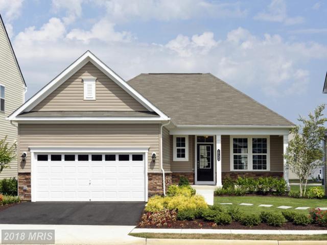 1717 Hudgins Farm Circle, Fredericksburg, VA 22408 (#SP9013604) :: Bob Lucido Team of Keller Williams Integrity