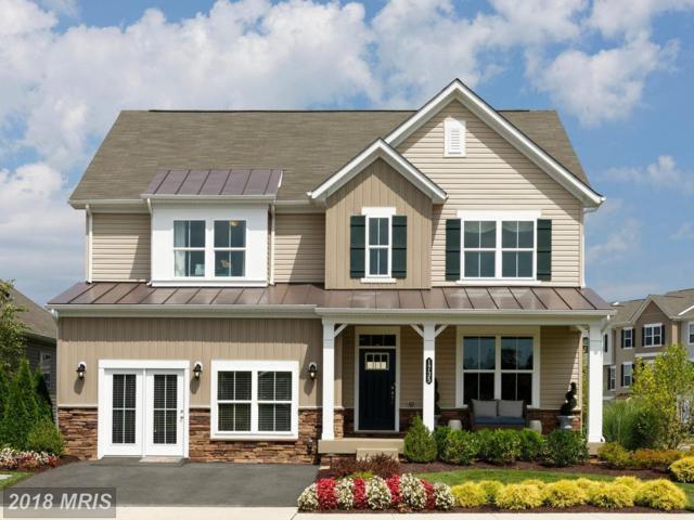 4709 Annie Mae Drive, Fredericksburg, VA 22408 (#SP9013624) :: Bob Lucido Team of Keller Williams Integrity