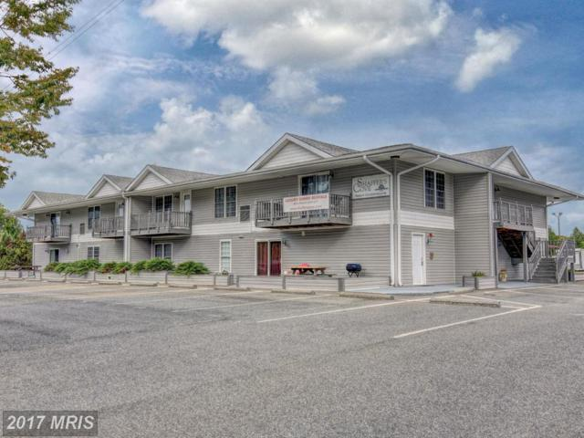 13705 Anna Point Lane #4, Mineral, VA 23117 (#SP9783375) :: LoCoMusings