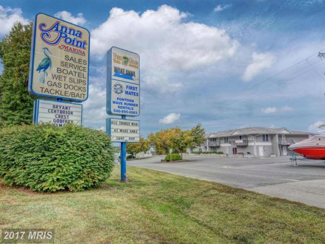 13705 Anna Point Lane #8, Mineral, VA 23117 (#SP9783690) :: Pearson Smith Realty