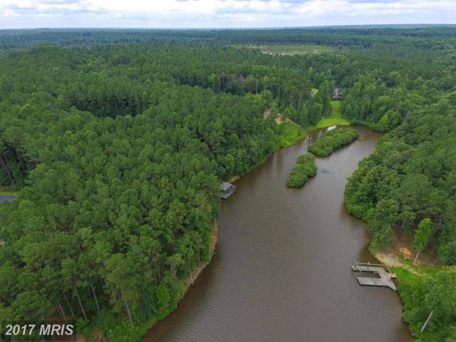 Southlake Drive, Spotsylvania, VA 22553 (#SP9829772) :: Pearson Smith Realty