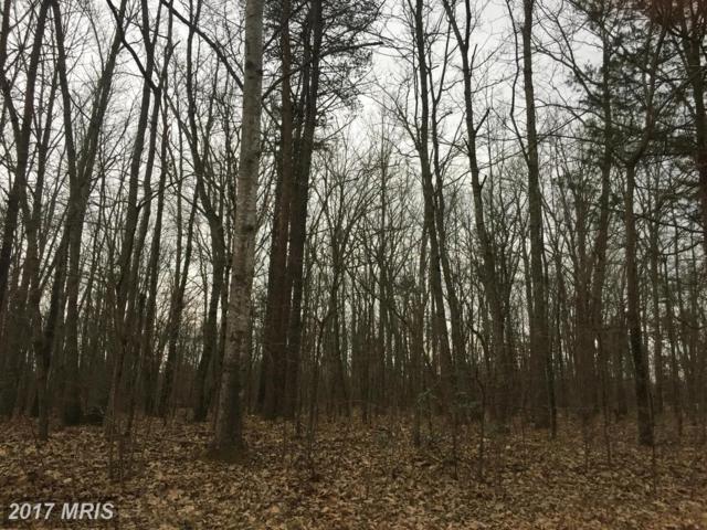 14221 Fox Hole Lane, Spotsylvania, VA 22551 (#SP9872107) :: LoCoMusings