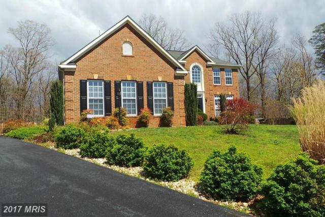 11330 Long Branch Way, Fredericksburg, VA 22408 (#SP9911230) :: LoCoMusings